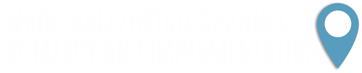 Wholesale / Retail Channel Strategy and Implementation